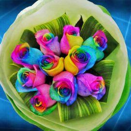 10 Rainbow roses Hand Bouquet