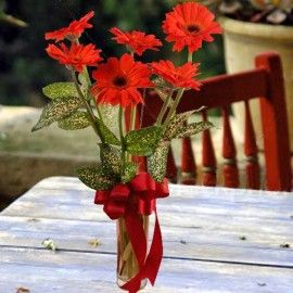 6 Red Gerberas in Glass Vase Table Arrangement