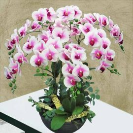 8 Artificial Phalaenopsis Orchid Table Arrangement.