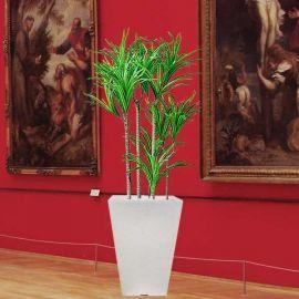 Artificial Plant - Dracaena marginata One Meter Height