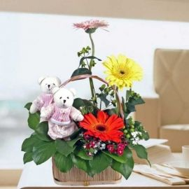 Couple Bear & 3 Mixed Gerbera Basket Table Arrangement Table Arr