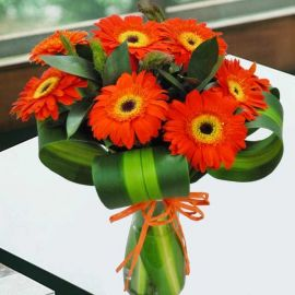 10 Orange Gerbera in Glass Vase