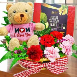 Bear, Carnations with Chocolate