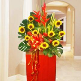 10 Sunflowers Arrangement in Box Stand