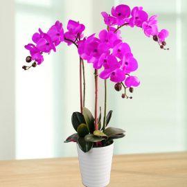 Artificial Phalaenopsis Purple Orchid Table Arrangement