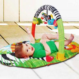 Baby Play Gym PG010