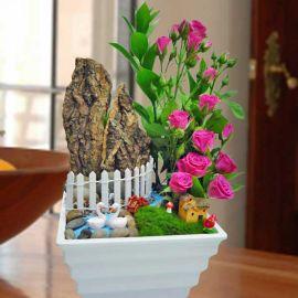 Mini Hot Pink Roses Garden Design ( 1 Day Advance Order )