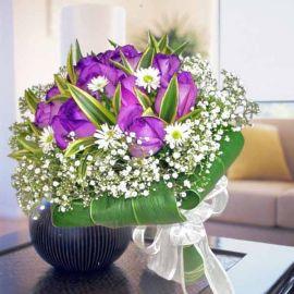 12 Purple Roses, White Phoenix Wrap With Dracaena Foliage