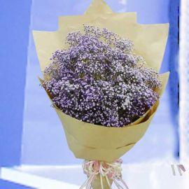 Purple Baby's-breath ( Gypsophila ) Hand Bouquet.