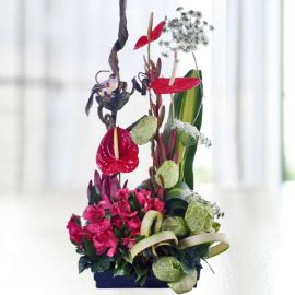 Red Anthurium & Alstroemeria Arrangement